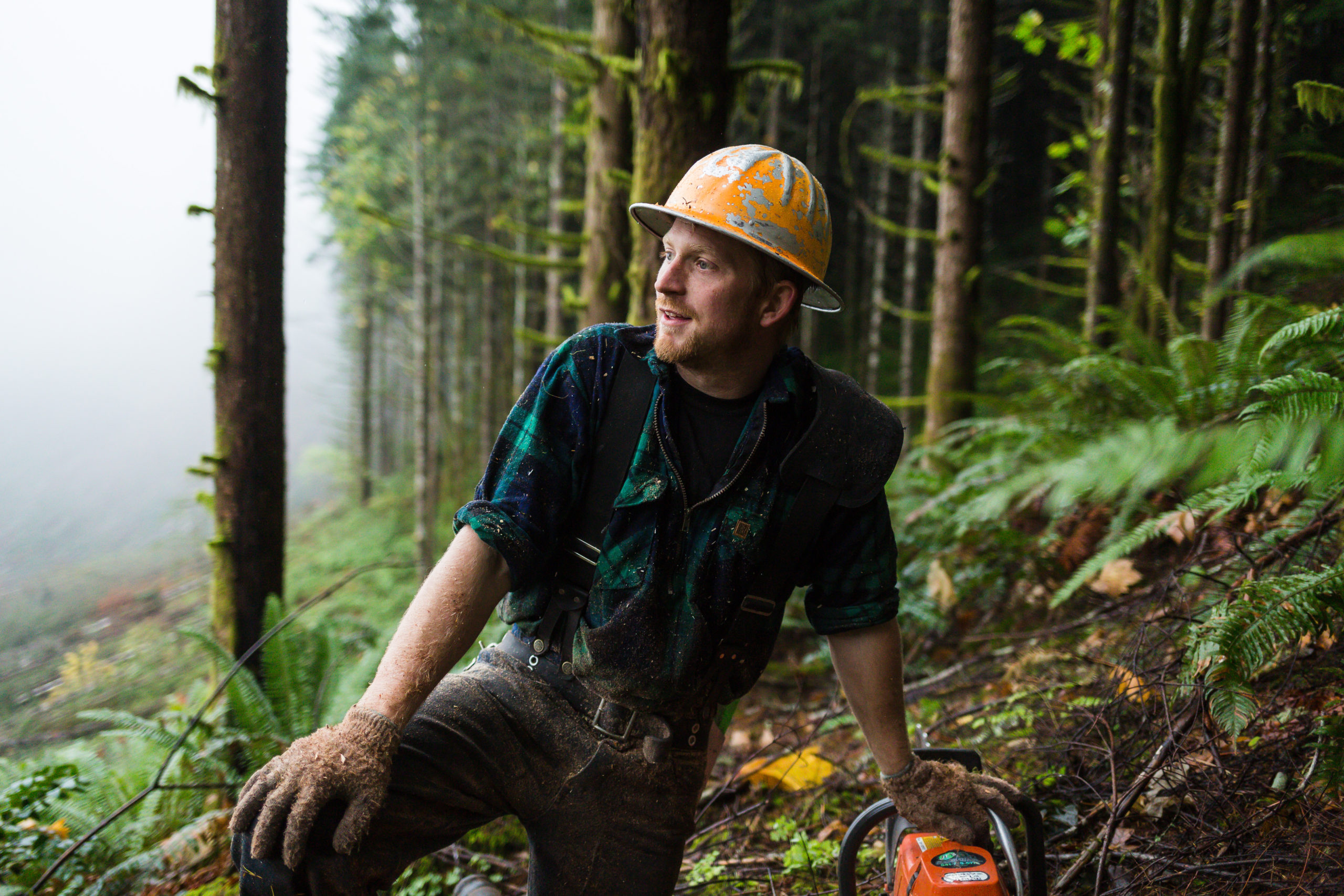 Roseburg Forest Products Case Study